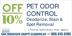pet odor san francisco pet stains removal